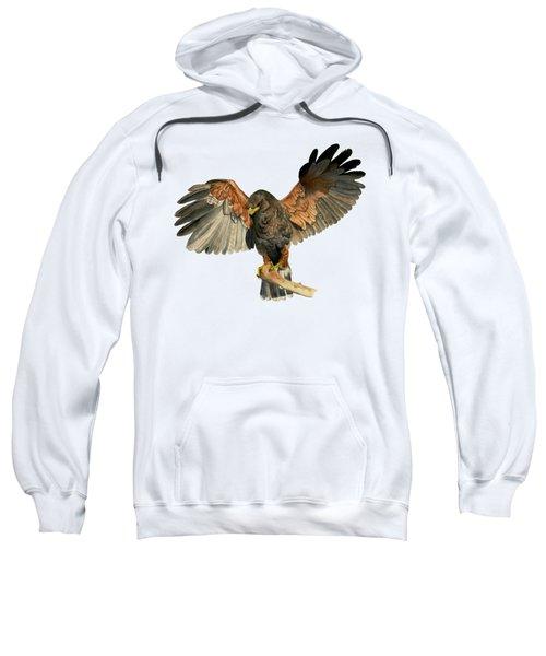 Hawk Flapping Wings Watercolor Painting Sweatshirt