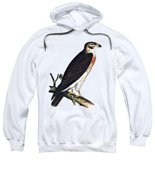 Hawk Swainsons Hawk Sweatshirt