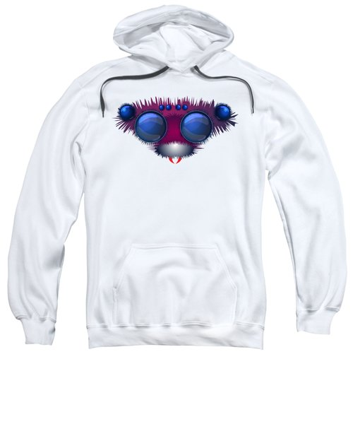 Head Of The Big Hairy Spider Sweatshirt by Michal Boubin