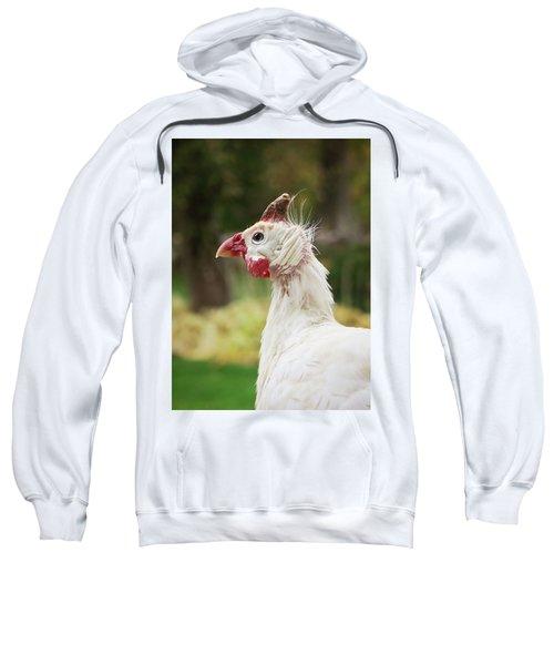 Hello Neighbor Sweatshirt
