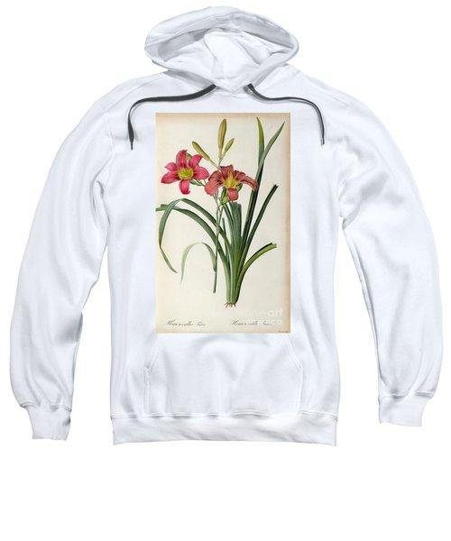 Hemerocallis Fulva Sweatshirt