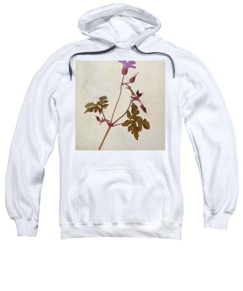 Herb Robert - Wild Geranium  #flower Sweatshirt by John Edwards