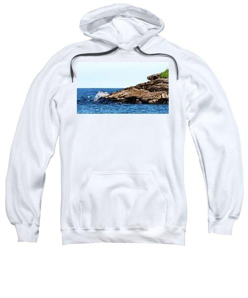 Herring Gull Picnic Sweatshirt