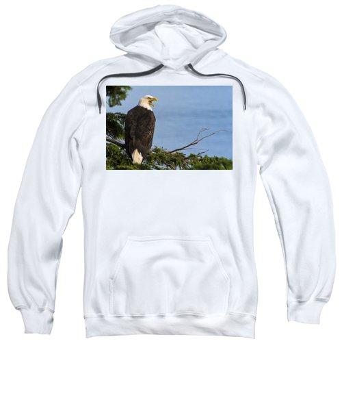 Hey Sweatshirt