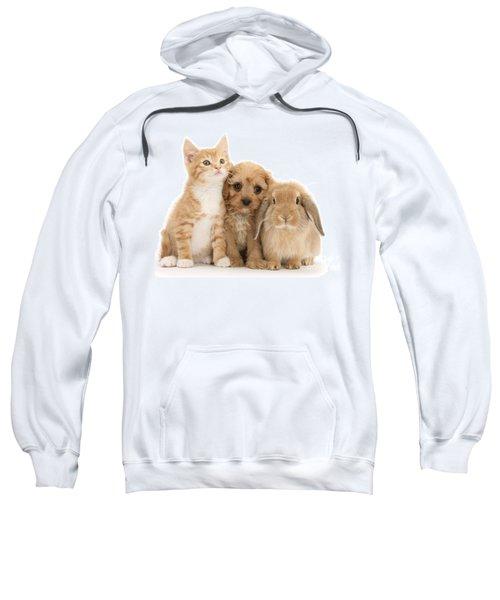 Hey, Move Over, You're Upstaging Me Sweatshirt