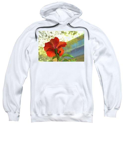 Hibiscus Aglow Sweatshirt