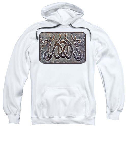 Hidden Dragon Sweatshirt by Ethna Gillespie