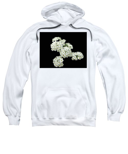 Home Grown White Flowers  Sweatshirt