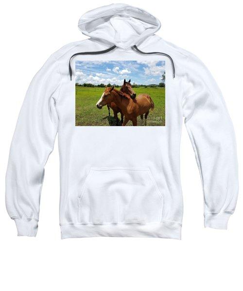 Horse Cuddles Sweatshirt