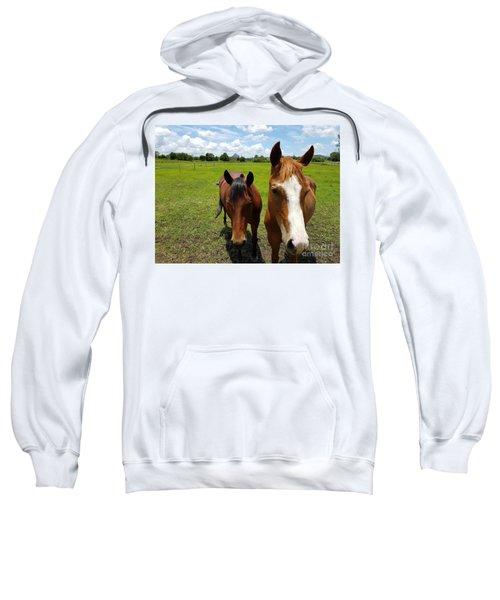 Horse Friendship Sweatshirt