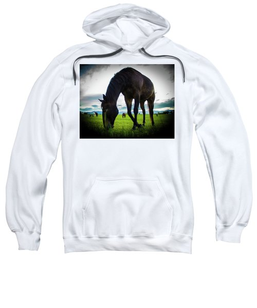 Horse Time Sweatshirt