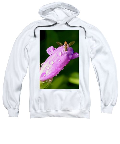Hoverfly On Pink Flower Sweatshirt