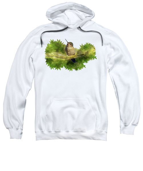 Hummingbird In A Tree Sweatshirt