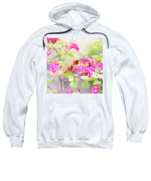 Hummingbird In Spring Sweatshirt