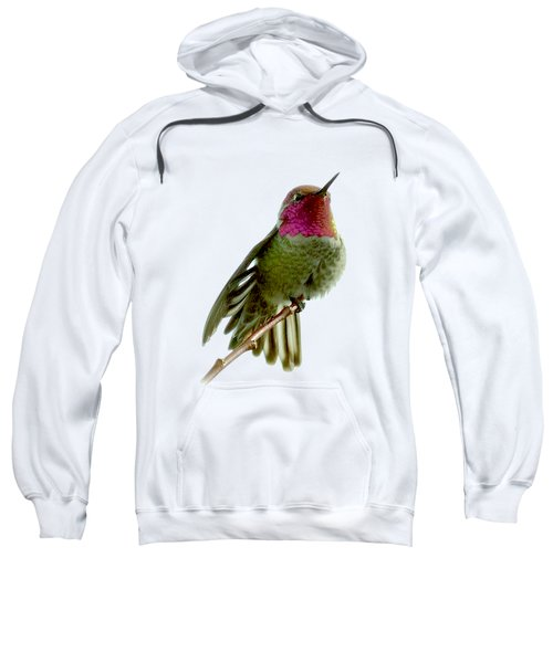 Hummingbird Portrait T1 Sweatshirt