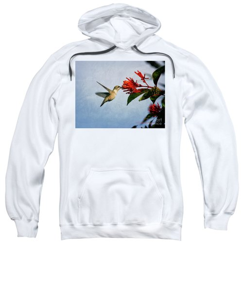 Hummingbird Red Flowers Sweatshirt