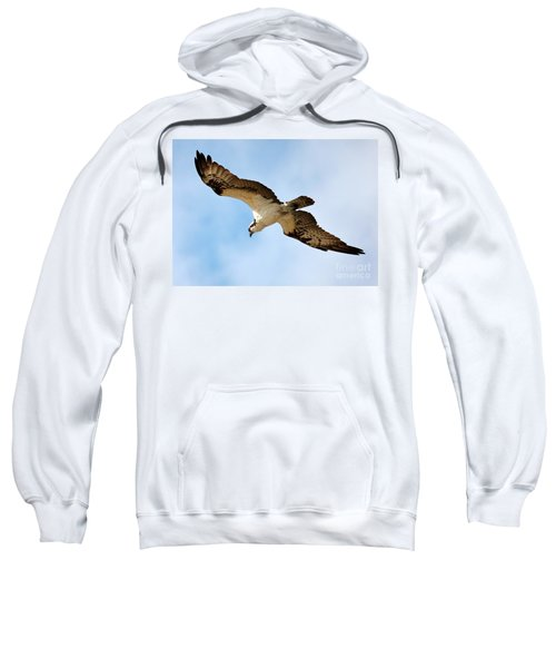 Hunter Osprey Sweatshirt