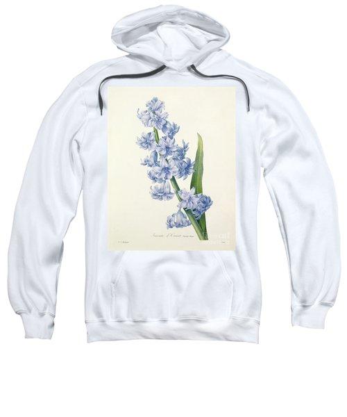 Hyacinth Sweatshirt