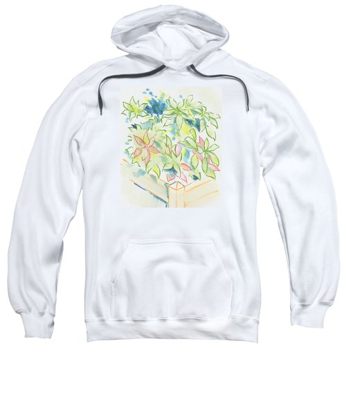 Hydrangea Plant Growing Out Of A Square Wooden Planter Sweatshirt