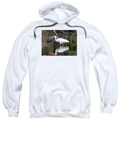 Ibis Drink Sweatshirt