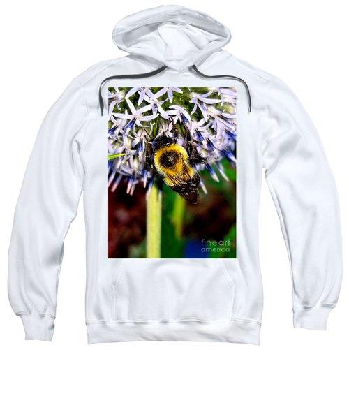 I'll Bee Back Sweatshirt