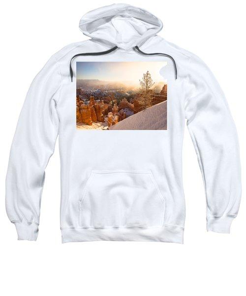 Illumination Sweatshirt
