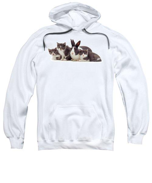 I'm Bun Of The Family Sweatshirt