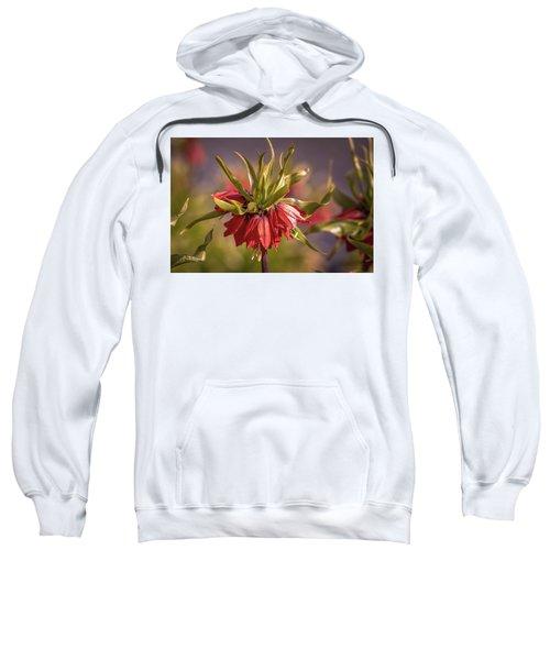 Imperial Crown #g3 Sweatshirt