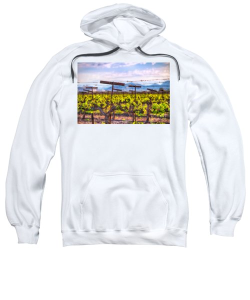 In The Vineyard Sweatshirt