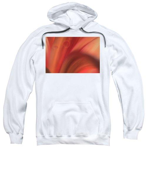 Inside Jupiter, Artists Rendition Sweatshirt