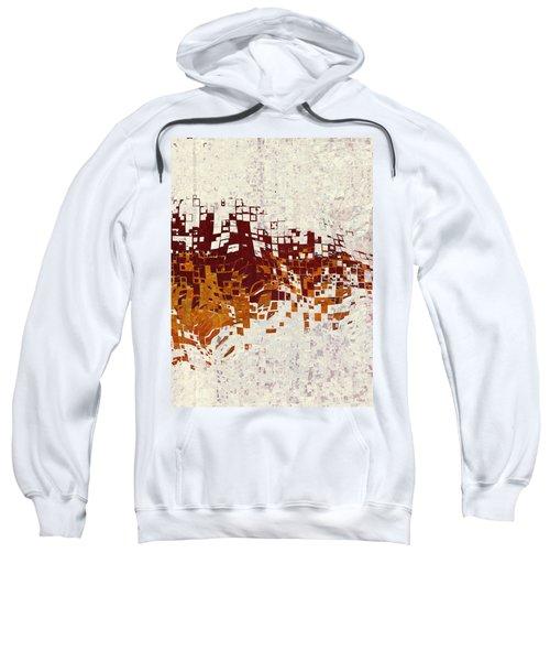 Insync Sweatshirt