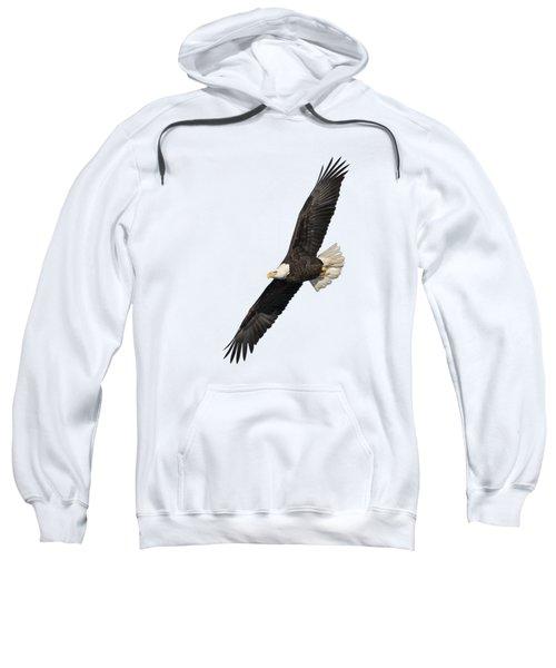 Isolated American Bald Eagle 2016-3 Sweatshirt