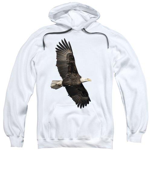 Isolated American Bald Eagle 2016-4 Sweatshirt