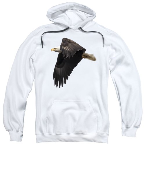 Isolated American Bald Eagle 2016-6 Sweatshirt