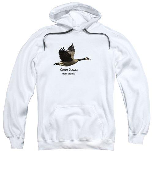 Isolated Canada Goose 2015-1 Sweatshirt