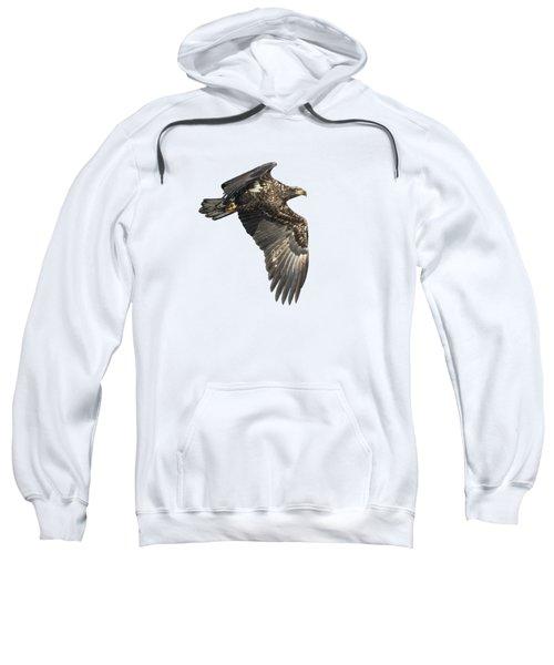 Isolated Eagle 2017-2 Sweatshirt