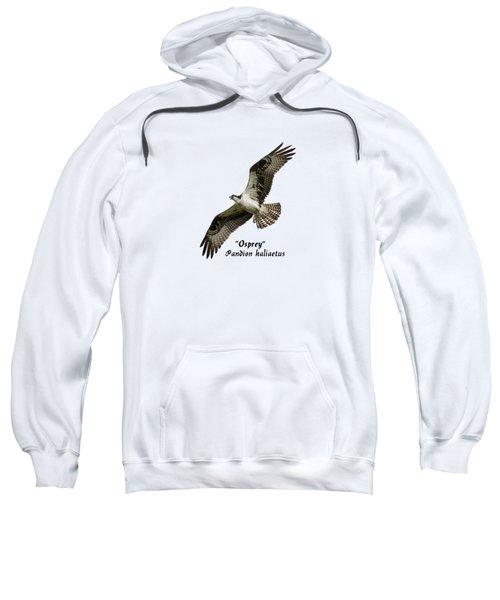 Isolated Osprey 2017-1 Sweatshirt