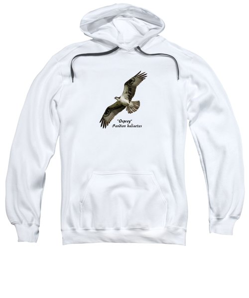 Isolated Osprey 2017-1 Sweatshirt