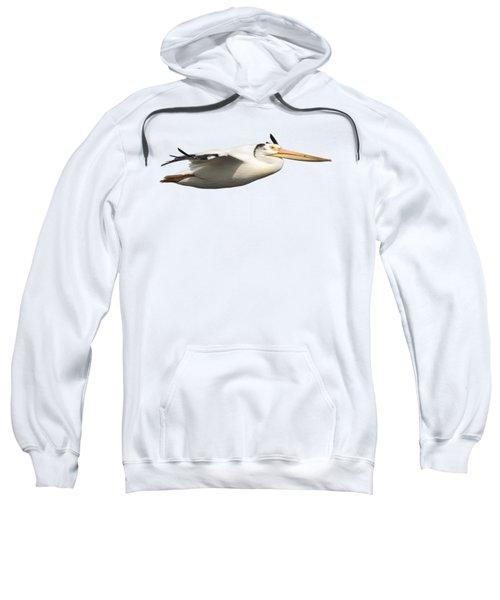 Isolated Pelican 2016-1 Sweatshirt