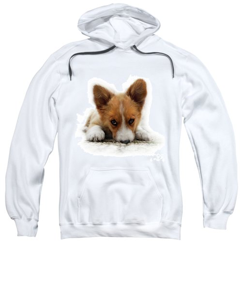It Wasn't Me Corgi Sweatshirt