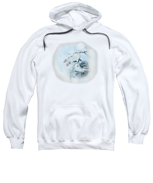 January Bluejay  Sweatshirt by Susan Capuano