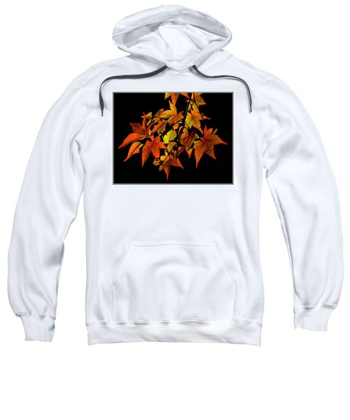 Japanese Maple Sweatshirt