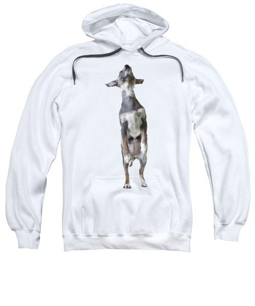 Jumping Dog Tee Sweatshirt