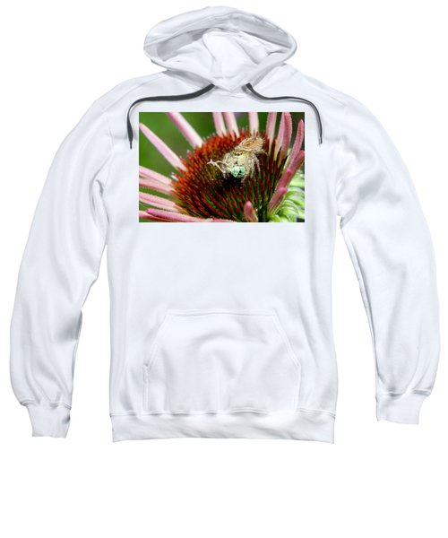 Jumping Spider With Green Weevil Snack Sweatshirt