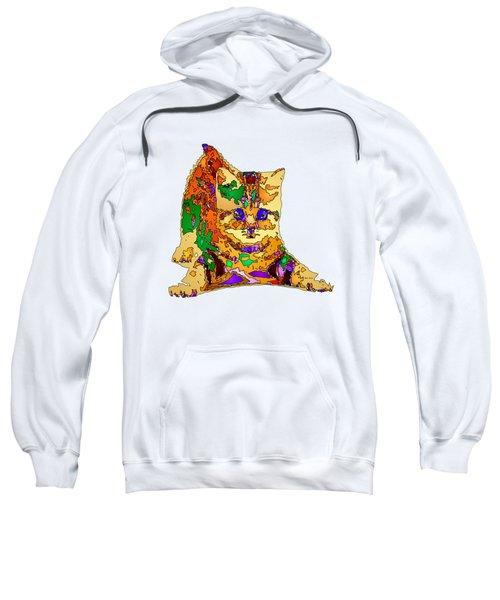 Kitty Love. Pet Series Sweatshirt