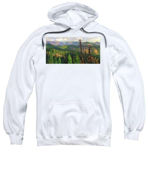 Ladycamp Sweatshirt