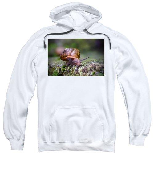 Land Snail II Sweatshirt