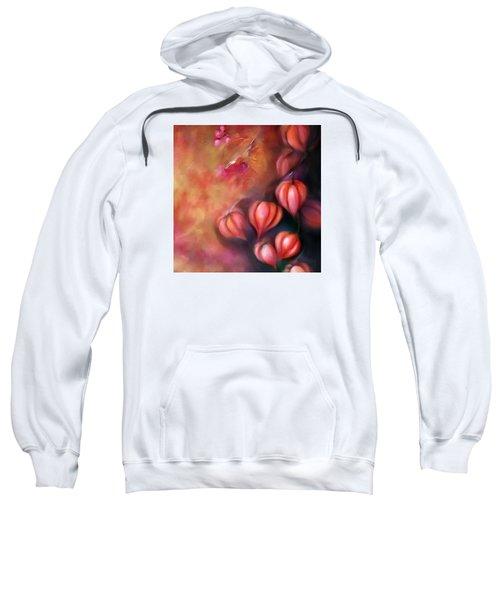 Chinese Lanterns Sweatshirt