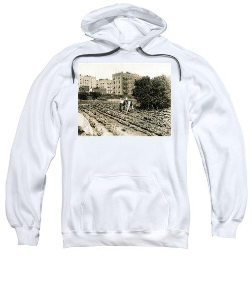 Last Working Farm In Manhattan Sweatshirt by Cole Thompson