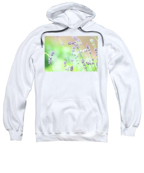 Lavender Garden Sweatshirt